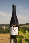 I.G.P. Val de Loire Rouge - Cuvée 5 ceps