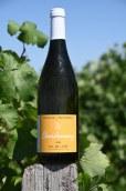 I.G.P. Val de Loire Blanc - Chardonnay